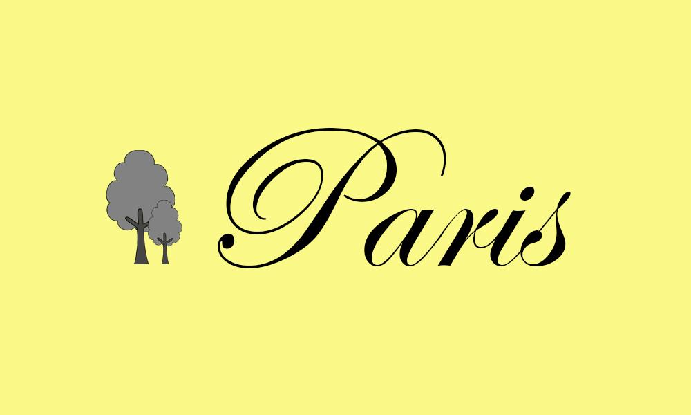 Pariška maglena jutra